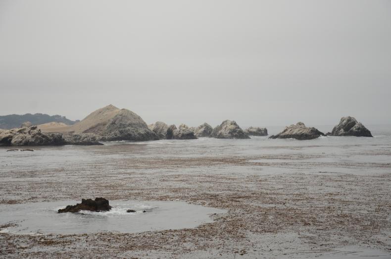 Rocks and Water, Point Lobos National Park www.bluemesablog.com