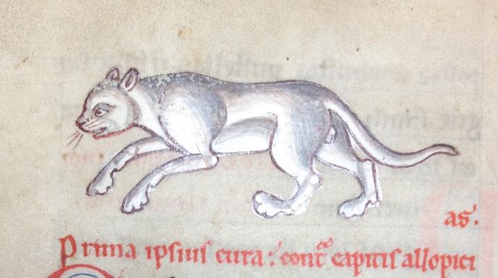 Flora and Fauna in Medieval Medical Manuscripts, Oxford www.bluemesablog.com