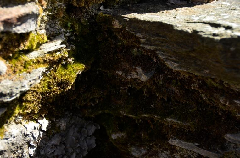 _DSC5959Kilchurn Castle, Loch Awe, Scotland www.bluemesablog.com